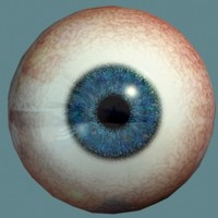 Eyeball Dark Blue.zip