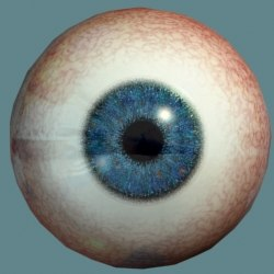 eyeball dark blue eye max