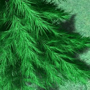 small pine tree 3ds
