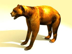 3ds la faced bear