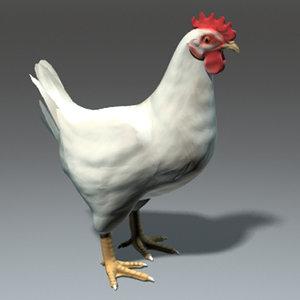 3d hen chicken