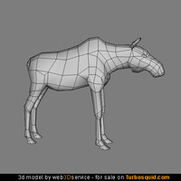 Young Moose 3d model 3ds max format