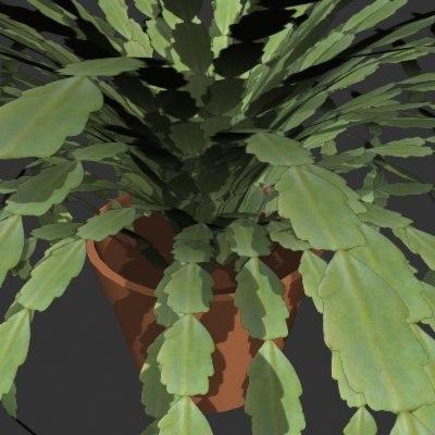 cactus 3d 3ds