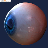 Realistic Eye 3d model