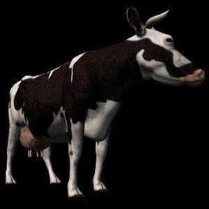 3d mammal cow pzcow 3t model