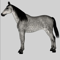 3d model of horse mare