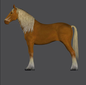 miniature horse pony pzhor 3d pz3