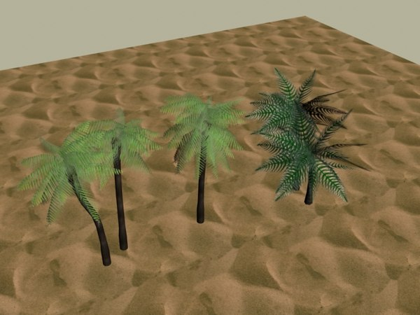 3d model of palm trees