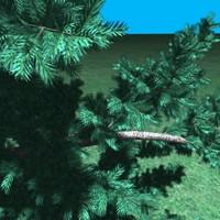 pinetree03.zip