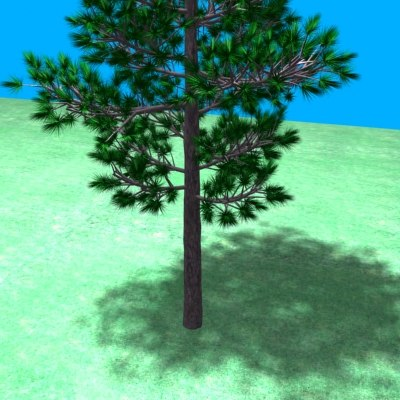 red pine tree 3d 3ds