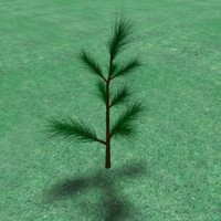 free 3ds model needle pines tree