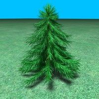 3d small pine tree model
