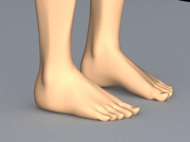 human feet 3d model