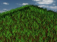 3d model grass patch