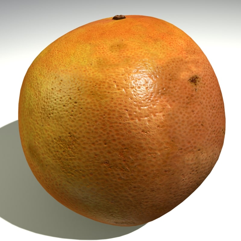 fruit grapefruit 3d max