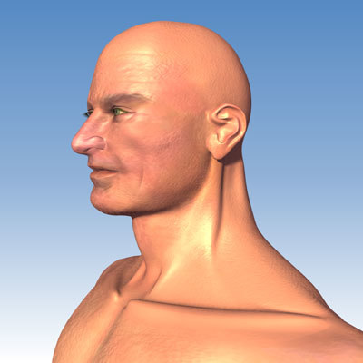 nude adult male 3d model
