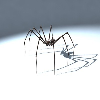 daddy longlegs spider 3d model