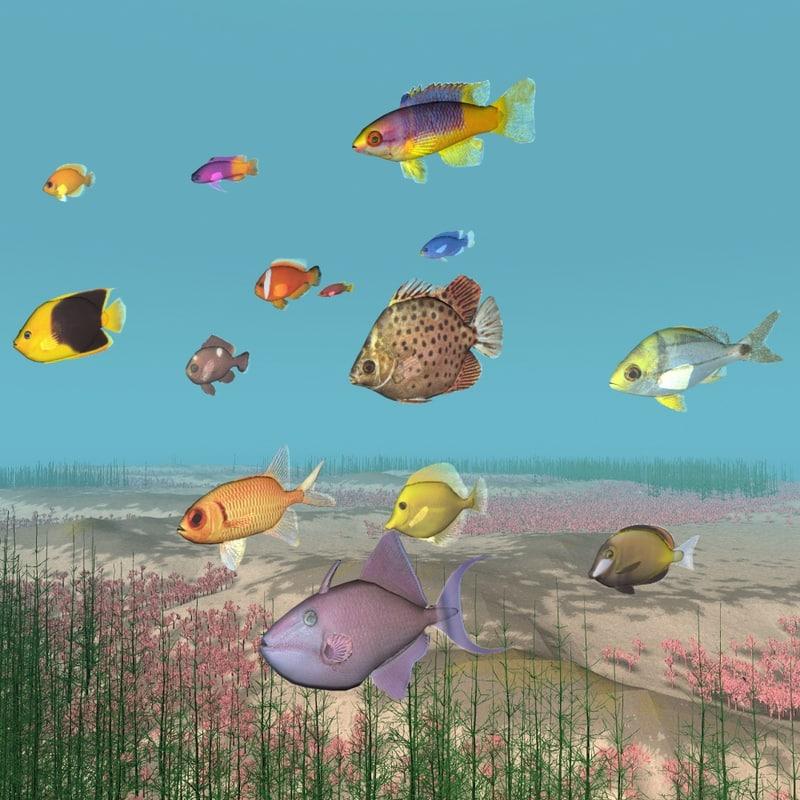 3dsmax tropical fish