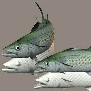 spanish mackerel 3ds