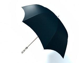 3d black umbrella model