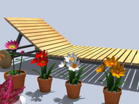 outdoor cat flowers 3d model
