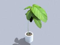plants garden 3d 3ds