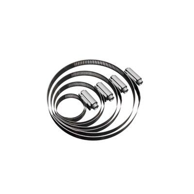 hose clamps 3d max