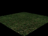free max mode grass