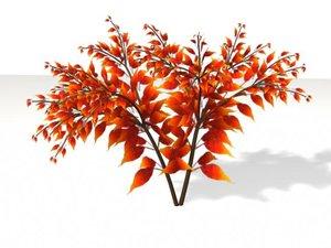 bush fern dxf