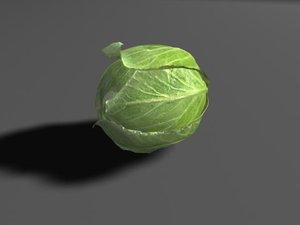 lettuce leaves 3d model
