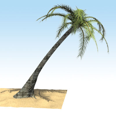 lightwave palm tree