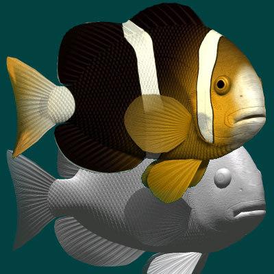 yellowtail clownfish 3ds