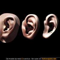human ear 3d models collection