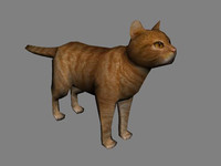 cat orange tabby 3d obj