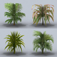 3d model tropical plants trees