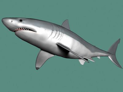 lightwave great white shark