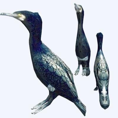 great cormorant 3d obj