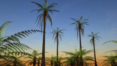 3d ferns trees pre-historic model