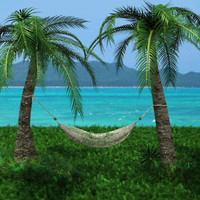 hammock palm trees 3d lwo