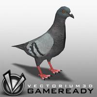 Animals - Game Ready - Pigeon
