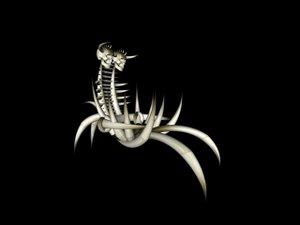chair bones 3d model