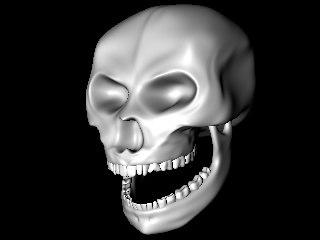 free skull 3d model
