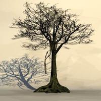 Big_tree3.zip