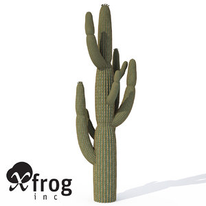 giant saguaro plant 3d model