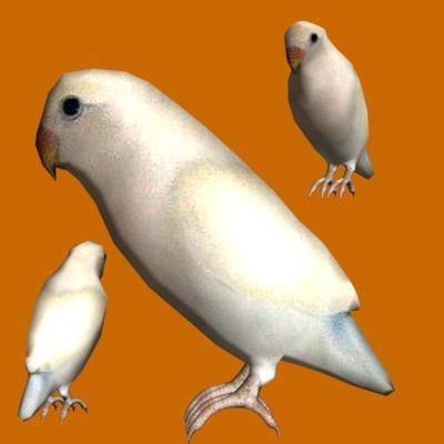 3ds parrot