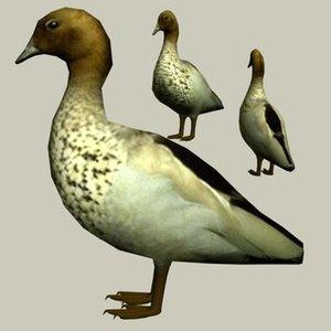 3d model of duck wood australian