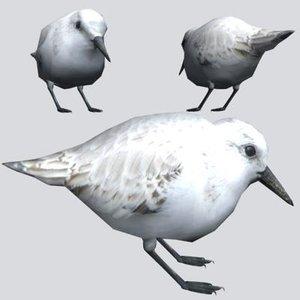sanderling 3d max