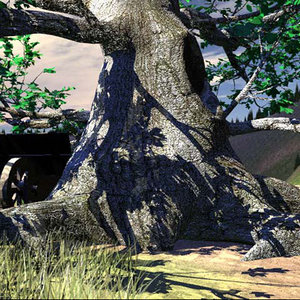3d model black old tree