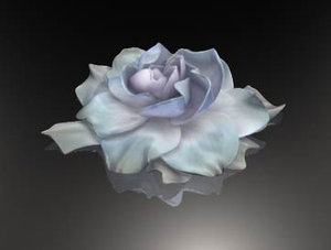 gardenia renderman 3d model