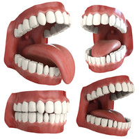teeth animation character mouth 3d model